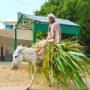 Mohamed-mocht-niet-meedoen-aan-Boer-Zoekt-Vrouw