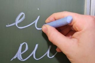 Nederlandse-taal-te-moeilijk-voor-pvv-aanhang