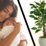 MOEILIJK: Een baby… of toch liever een plant?
