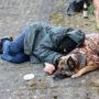 Omzet daklozen sterk gestegen