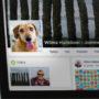 Facebook niet geïnteresseerd in uw hond