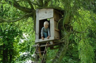 Gemeente eist sloop van Sven's illegale boomhut