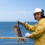 Man ontwikkelt 'omgekeerd vissen'