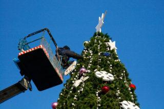 kerstboom-hans-dorsmolen