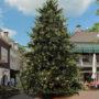 Gemeente Meppel wéér de eerste met kerstboom