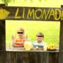 """""""Koop geen limonade van deze kinderen"""""""