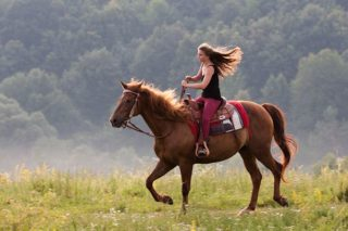 paard-paardrijden