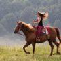 Dierenliefhebbers eisen verbod op paardrijden