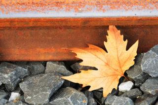 rails-trein-spoorwegen-blad-blaadje