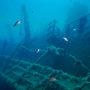 Reünie Titanic-passagiers slecht bezocht