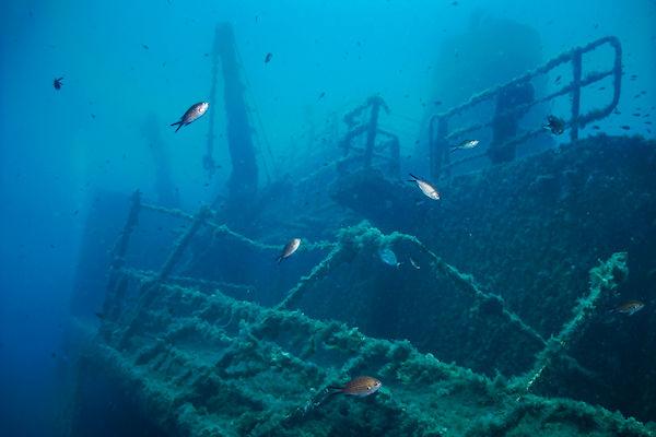 Passagiers Titanic niet besmet met coronavirus